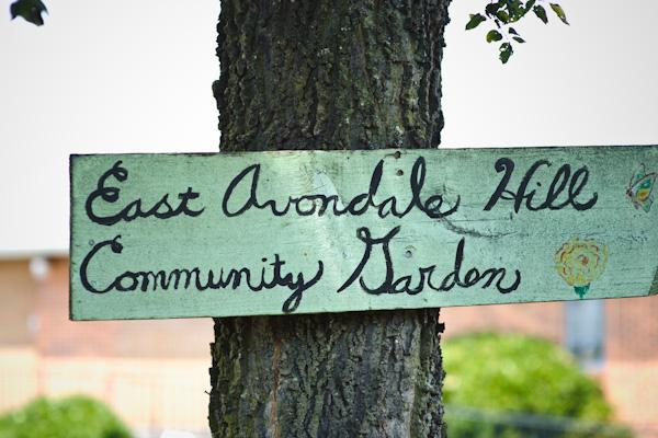 we found a community garden!